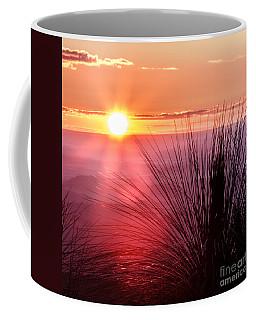 Grasstree Sunset Coffee Mug