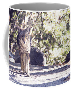 Coyote And Me At Vernal Falls Coffee Mug by Debby Pueschel