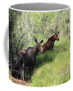 Grazing Along Coffee Mug