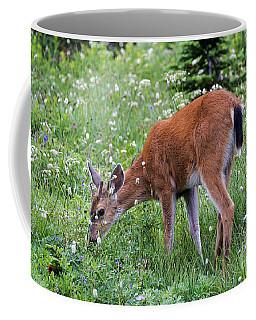 Grazing Young Buck Coffee Mug