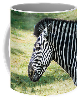 Grazing Zebra Coffee Mug