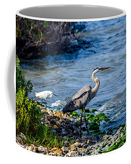 Great Blue Heron And Snowy Egret At Dinner Time Coffee Mug