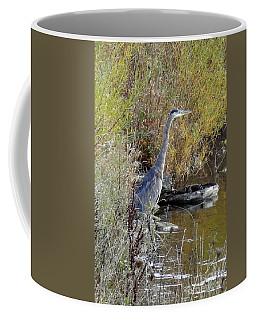 Great Blue Heron - Juvenile Coffee Mug