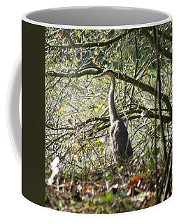 Coffee Mug featuring the photograph Great Blue Heron by Karen Silvestri