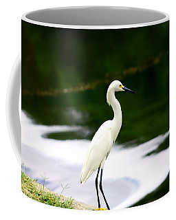 Great Egret Coffee Mug by Debra Forand
