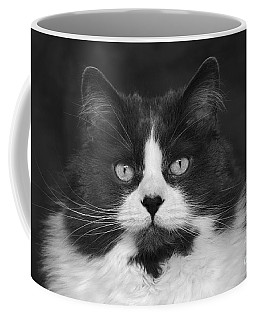 Great Gray Cat Coffee Mug