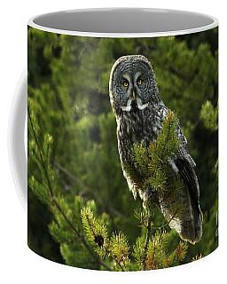 Great Grey Owl On The Hunt Coffee Mug