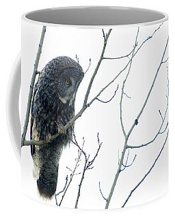 Great Grey Owl On Watch Coffee Mug