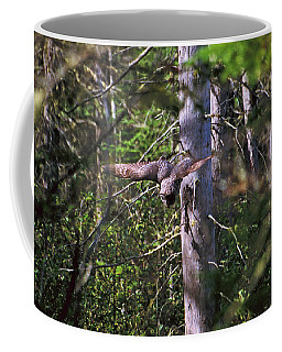 Coffee Mug featuring the photograph Great Grey Owl Pounces  by David Porteus