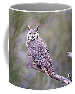 Coffee Mug featuring the photograph Great Horned Owl by Dan McManus
