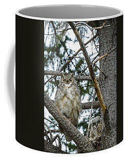 Coffee Mug featuring the photograph Great Horned Owl by Michael Chatt