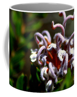 Coffee Mug featuring the photograph Great Spider Flower by Miroslava Jurcik