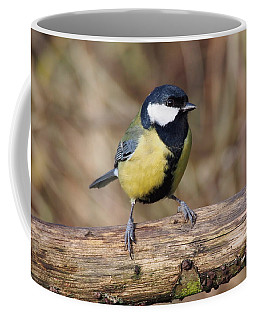 Coffee Mug featuring the photograph Great Tit On A Log by Paul Gulliver