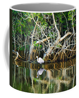 Great White Egret And Reflection In Swamp Mangroves Coffee Mug