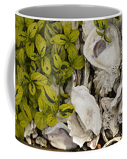 Green Abalone Coffee Mug