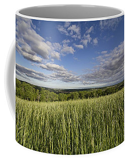 Coffee Mug featuring the photograph Green And Blue by Daniel Sheldon