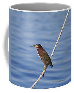 Green Back Heron Coffee Mug