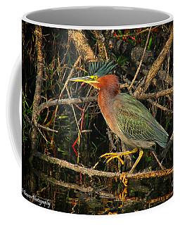 Green Heron Basking In Sunlight Coffee Mug