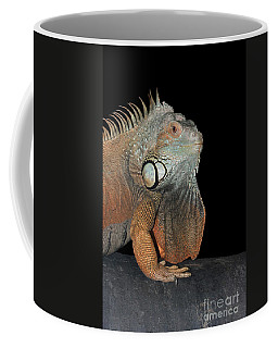 Green Iguana  Coffee Mug by Judy Whitton