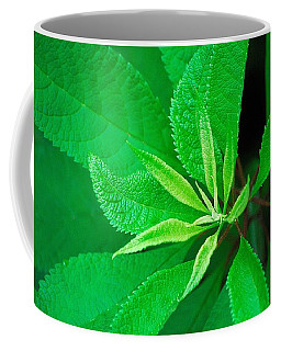 Green Coffee Mug by Ludwig Keck