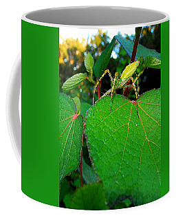 Coffee Mug featuring the photograph Green Lynx Spider 002 by Chris Mercer