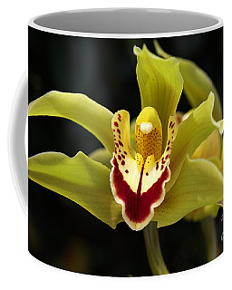 Green Orchid Flower Coffee Mug
