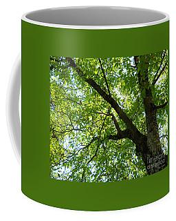 Green Coffee Mug by Ramona Matei