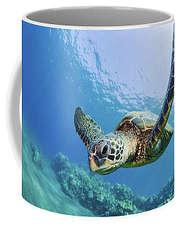 Green Sea Turtle - Maui Coffee Mug
