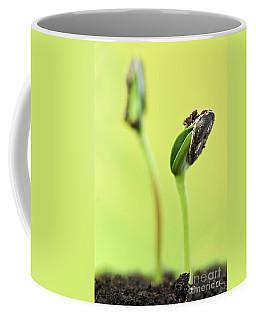 Green Sprouts Coffee Mug