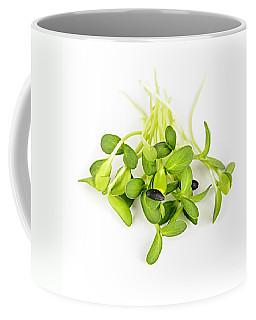 Green Sunflower Sprouts Coffee Mug