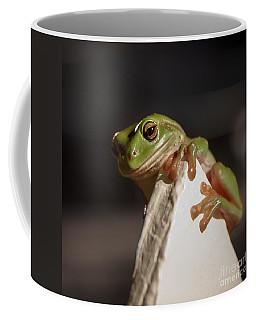 Green Tree Frog Keeping An Eye On You Coffee Mug