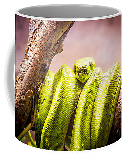Green Tree Python Coffee Mug