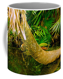 Green Turtle Chelonia Mydas In A Pond Coffee Mug