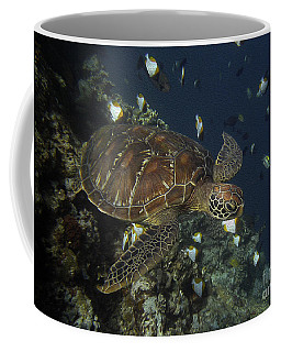 Coffee Mug featuring the photograph Hawksbill Turtle by Sergey Lukashin
