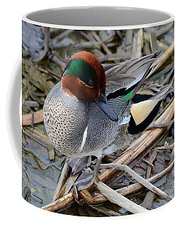 Coffee Mug featuring the photograph Green-winged Teal by Debra Martz