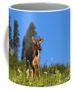 Greener Fields Coffee Mug