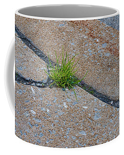 Coffee Mug featuring the photograph Greens In The Crack by Beth Sawickie