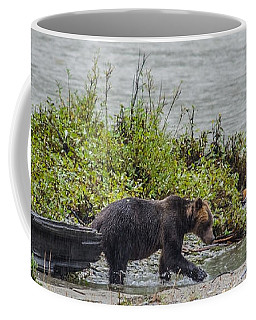 Grizzly Bear Late September 4 Coffee Mug