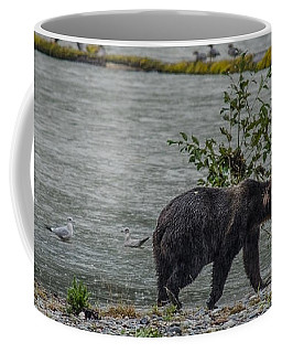 Grizzly Bear Late September 5 Coffee Mug