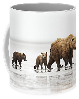 Grizzly Bear Mother And Cubs Lake Clark Coffee Mug