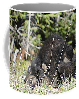Grizzly Cubs Playing Coffee Mug