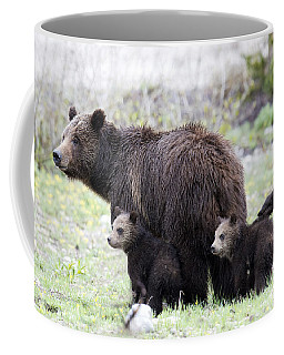 Grizzly Family Portrait Coffee Mug