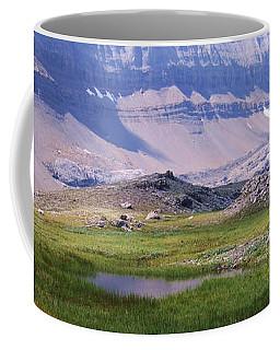 Grizzly Meadows Coffee Mug