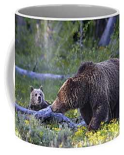 Grizzly Sow And Cub Coffee Mug
