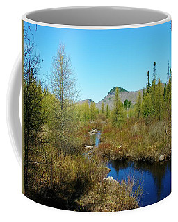 Coffee Mug featuring the photograph Groton State Forest Moose Country by Sherman Perry