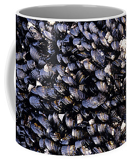 Group Of Mussels Close Up Coffee Mug