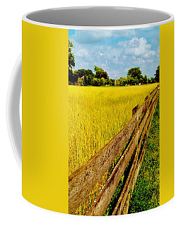 Growing History Coffee Mug