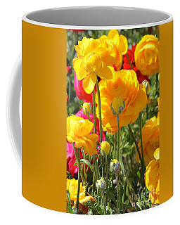 Growth Of A Ranunculus Coffee Mug by Suzanne Oesterling