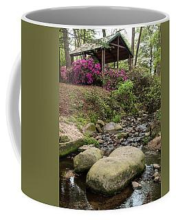 Guignard Park-1 Coffee Mug