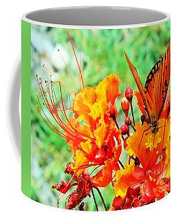Gulf Fritillary Butterfly On Pride Of Barbados Coffee Mug